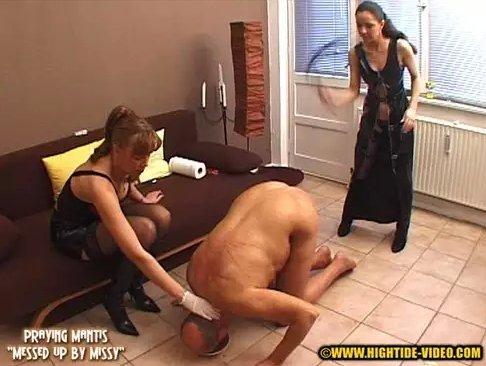 Praying Mantis - Messed up by Missy - 3