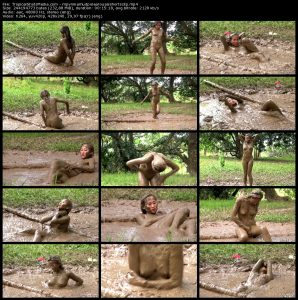 Exclusive Collection – 260 videos from MudPuddleVisuals.com, TropicalShotsMedia.com, ClubMPV.com and QuicksandVisuals.com